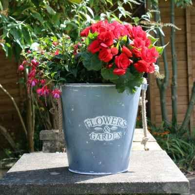 Round Flower Bucket