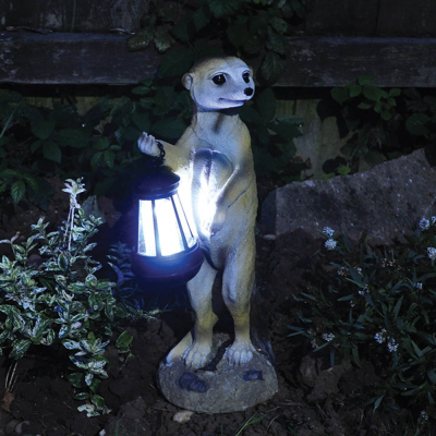 Solar Powered Meerkat with Lantern Light