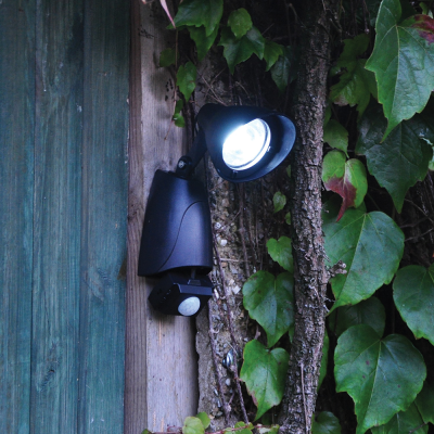 Solar Powered 9 LED Security Light with PIR