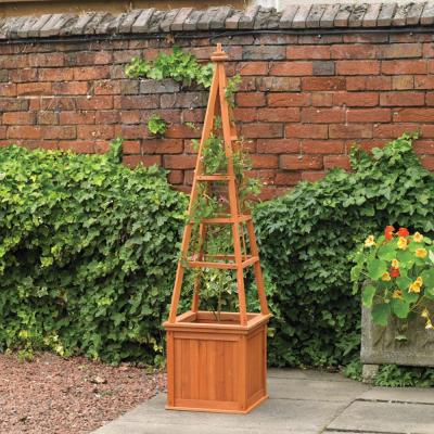 Obelisk Planter with Trellis