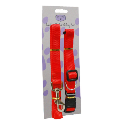 Adjustable Dog Lead and Collar Set
