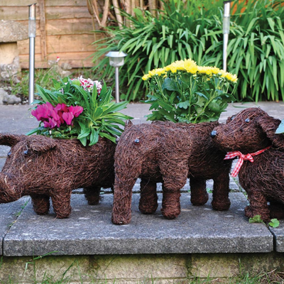 Rattan Animal Plant Pots (Pig/Elephant/Dog)