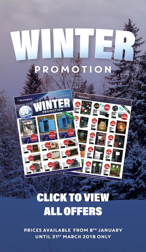 winter_promotion