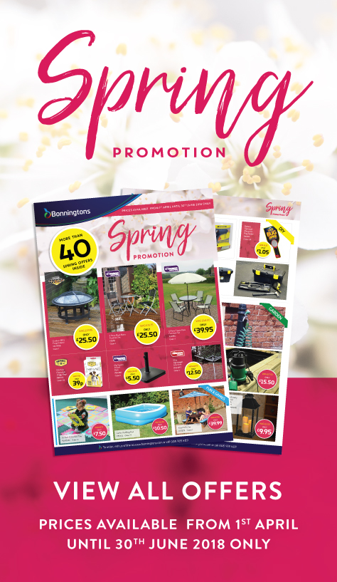 spring_promotion