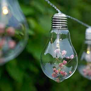 blossom bulb string light