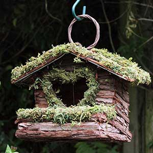 Rustic Bush Wood Bird House